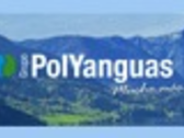GRUPO POLYANGUAS